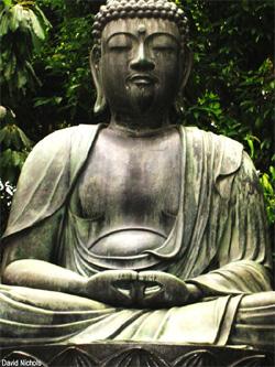 buddha031