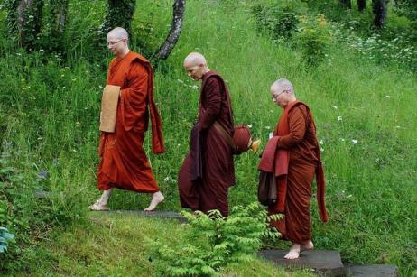 bhikkhunis